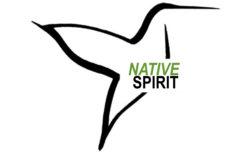 Native Spirit Foundation
